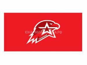 Знамя Юнармия
